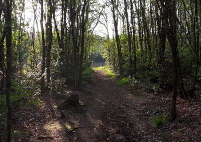route_ronde_van_de_blesse (13)